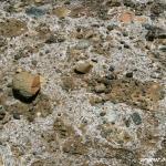 Salty soil