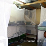 Boys room Mosquito nets