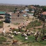 Somewhere in Nairobi suburb